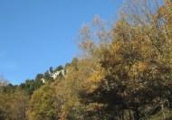 Crémenes, robledales El Vallejo 21 nov 2014 0121