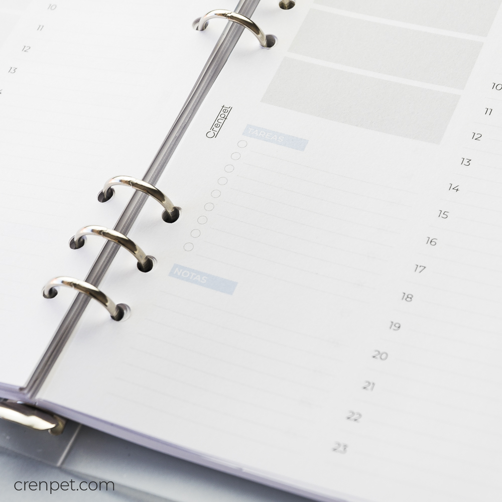 detalle tareas y notas recambio crenpet día vista