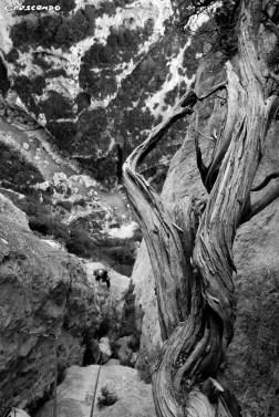 Gorges du Verdon - Stage d'escalade en falaise