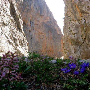 climbing, rock climbing Aladaglar
