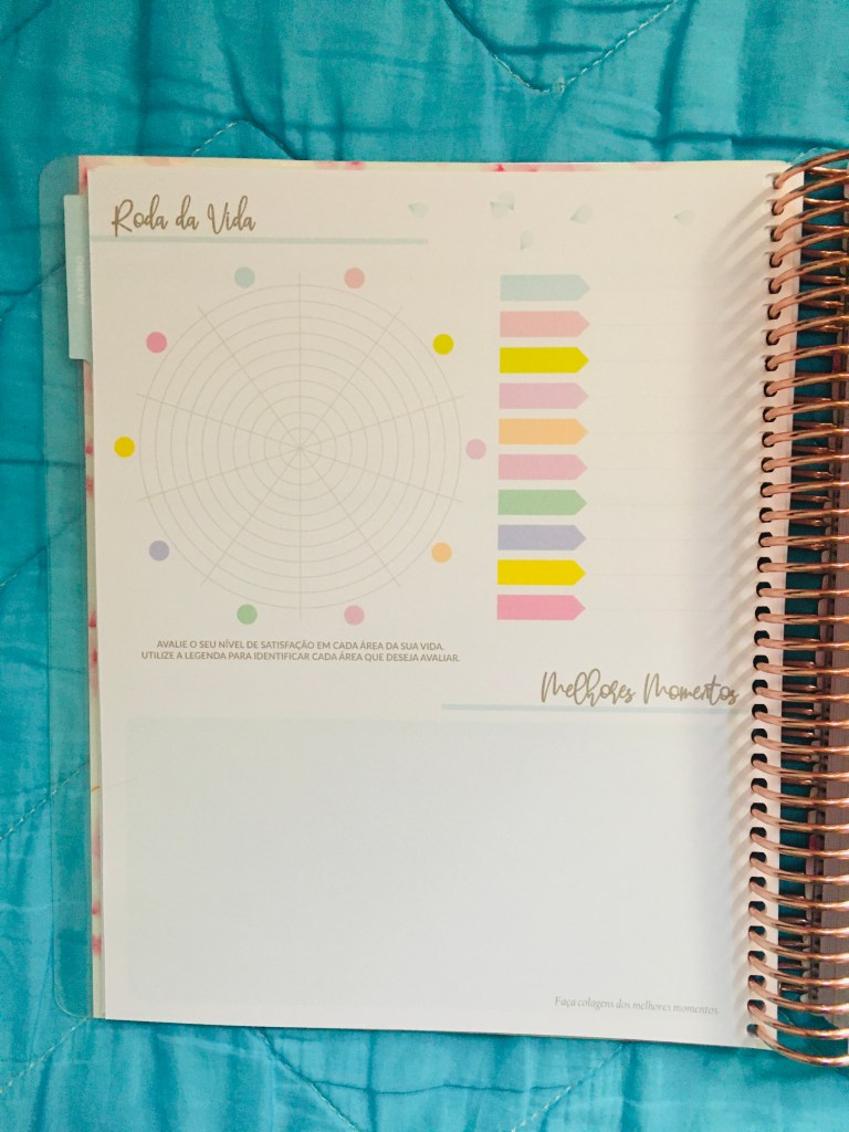 roda da vida planner