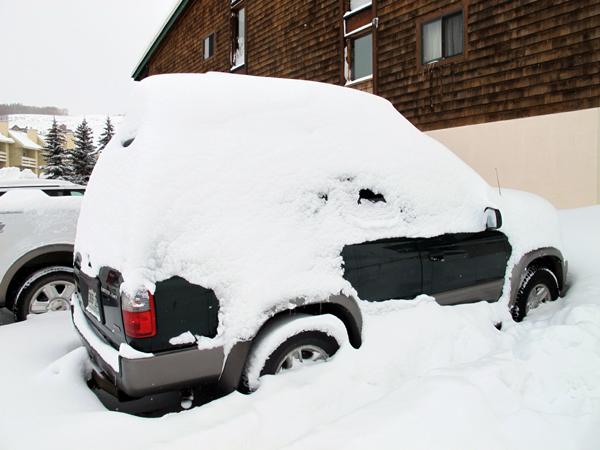 big snow temp 600