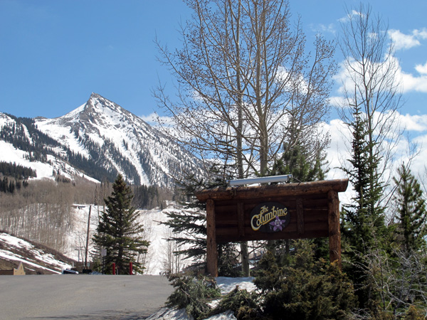 coumbine condos crested butte for sale