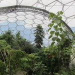 Eden Project Newquay Guides