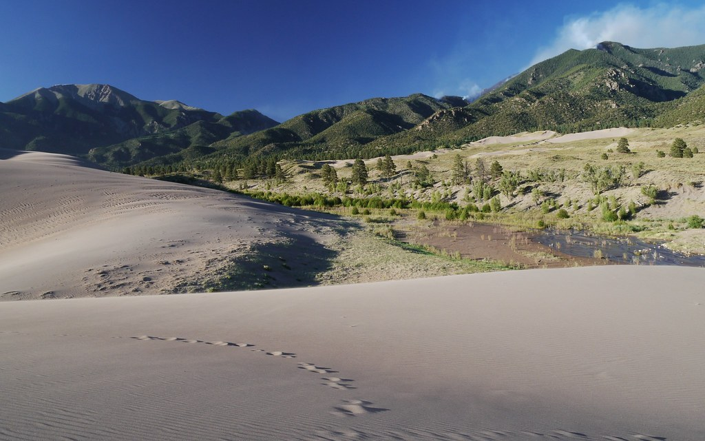 Prescribed burning planned at north end of Great Sand Dunes National Park in early October