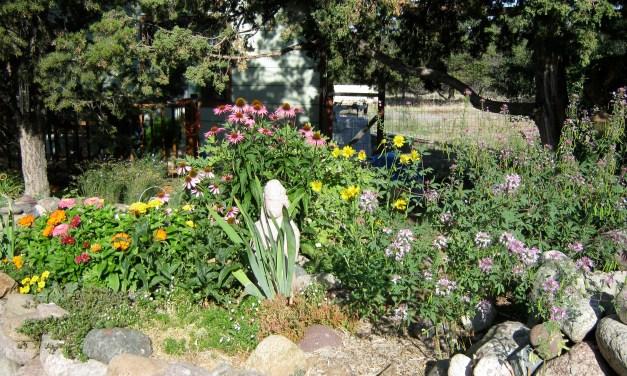 Garden Guru: Spring Work
