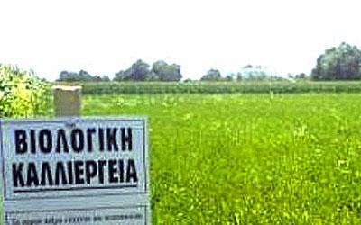 Ενίσχυση βιολογικής καλλιέργειας