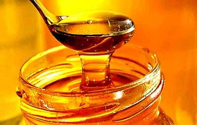 Στήριξη μελισσοκομίας