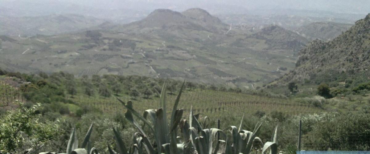 Arhanes, south of Heraklion