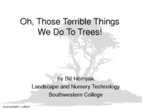 TERRIBLE THINGS WE DO TO TREES Presentation