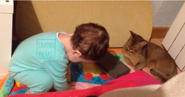 Tener gatos y bebés es posible