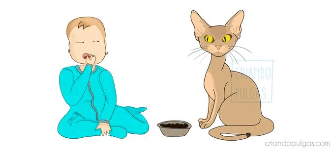 Gatos y bebés. Cuando la convivencia es un problema