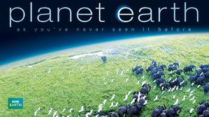 Portada de planet earth