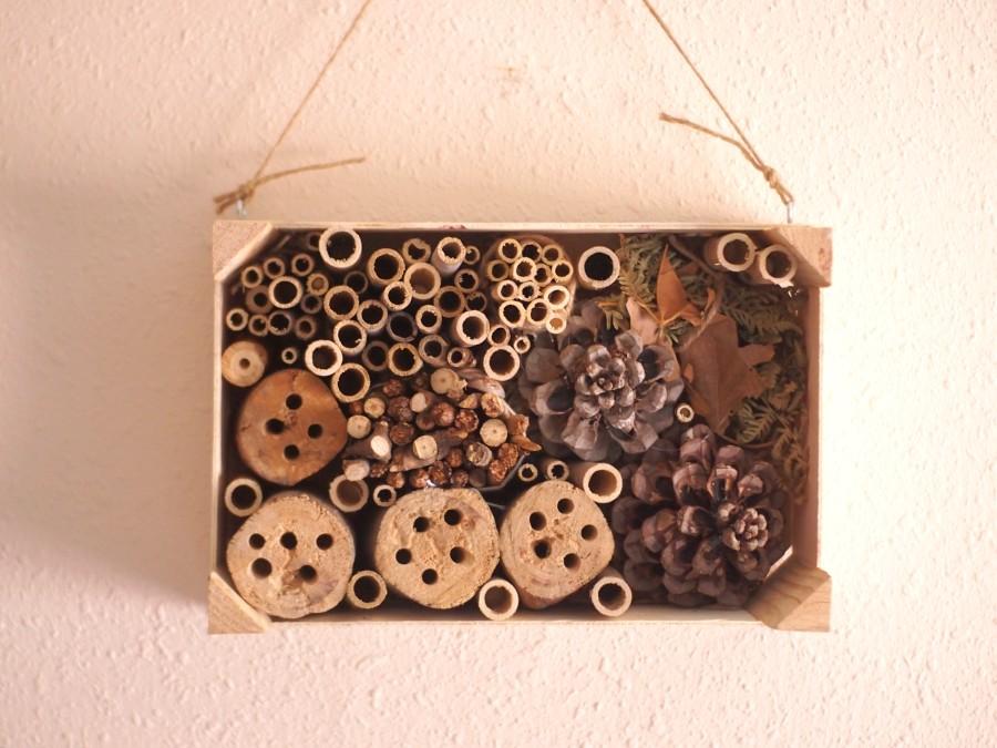 Foto del hotel de insectos en la caja de fresas de frente y colgado de una pared