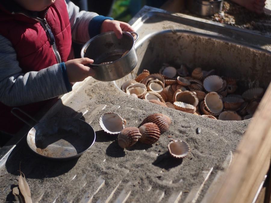 La pila llena de arena y conchas