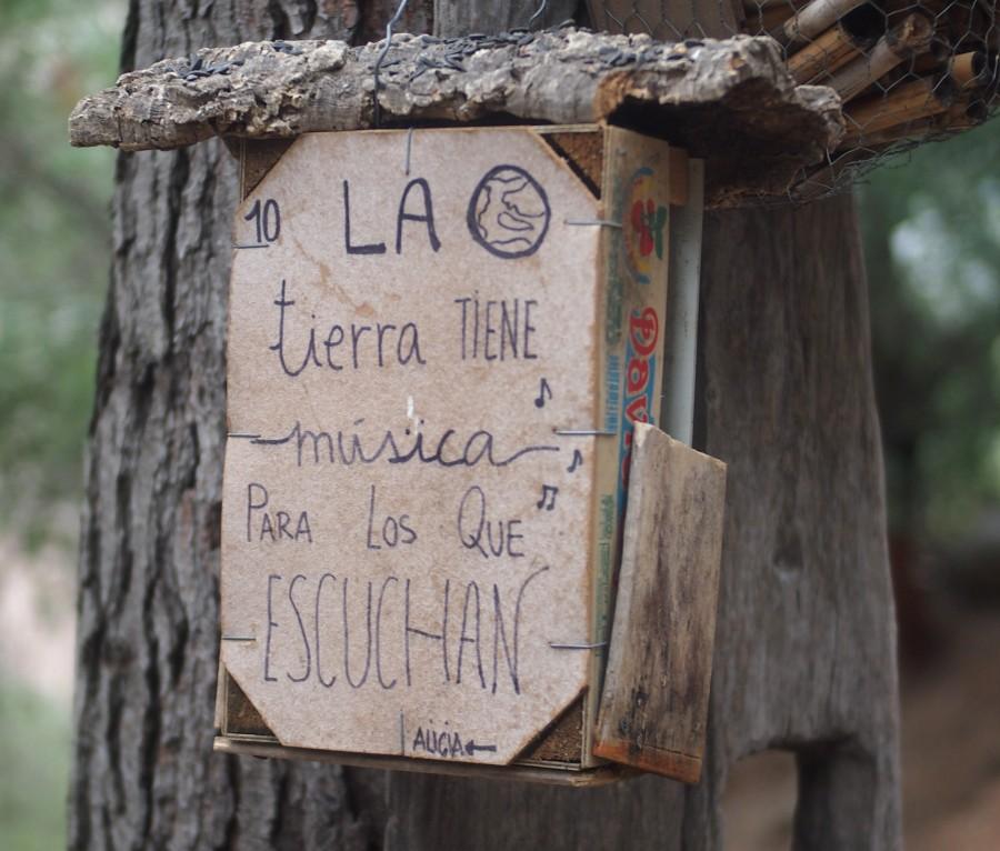 """Caja con mensaje: """"La tierra tiene musica para los que escuchan"""""""