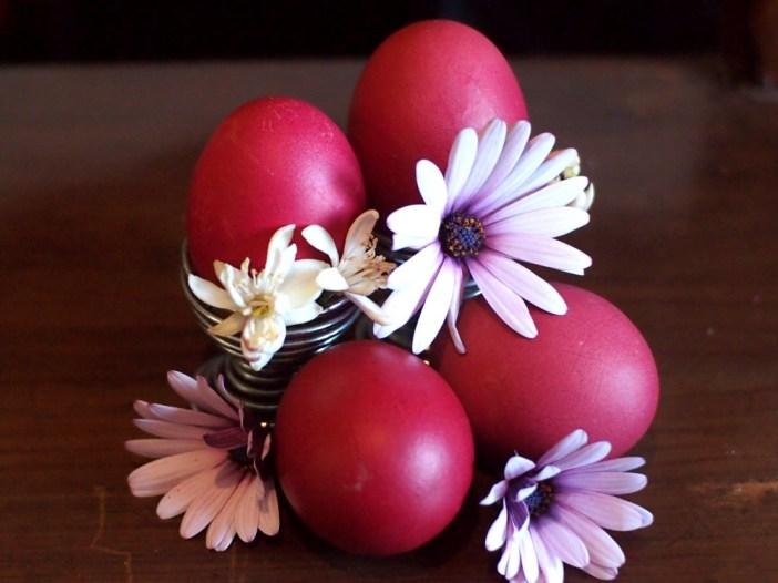 Huevos teñidos de rojo rodeados con flores de margarita