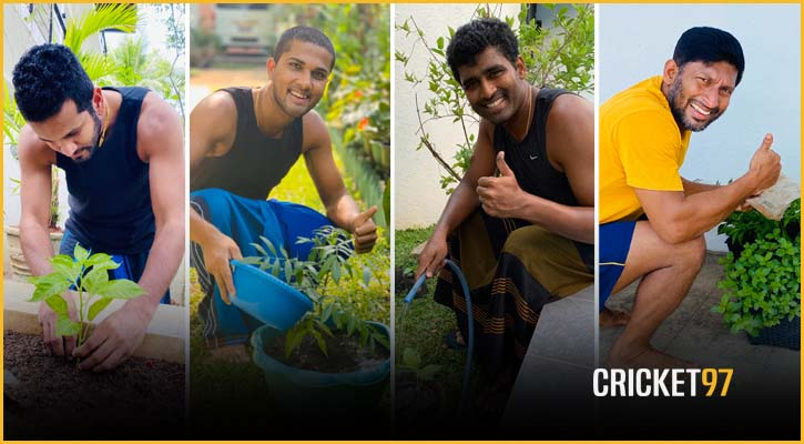 হোম কোয়ারেন্টাইনে লঙ্কান ক্রিকেটারদের 'হোম গার্ডেন চ্যালেঞ্জ'