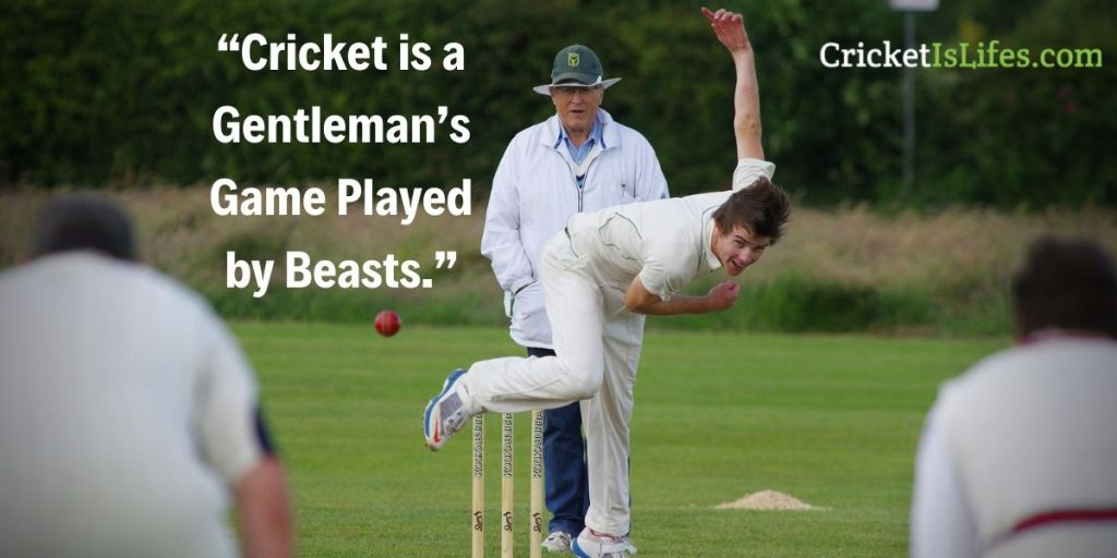 Cricket is a Gentleman's Game Played by Beasts.