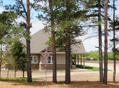 Pines - External