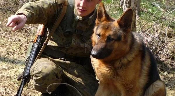 Двое граждан Украины пытались незаконно проникнуть в Крым