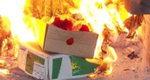 Управление Россельхознадзора: в Севастополе сожгли почти 400 кг санкционных сыров и колбас