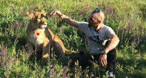 "В ""Тайгане"" пополнение: растут амурские тигрята, родился леопард Каспер и приехала львица Легенда"