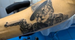 Симферополец обокрал зоомагазин с помощью… кошки