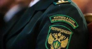 В Коктебеле Росприроднадзор пытается призвать к порядку ООО, эксплуатирующее местные КОС