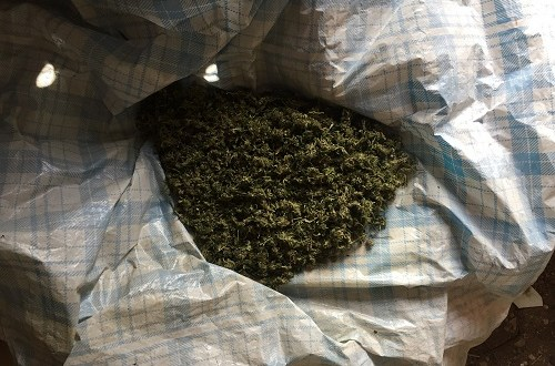 Очередной сельский «конопляный наркобарон» арестован в Сакском районе