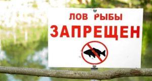 С 1 ноября рыбалка на Чёрном море запрещена!