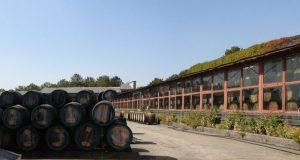 """Инвестор винзавода """"Коктебель"""" оправдывает ожидания крымских властей"""