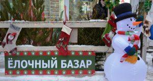 Елочные базары в Симферополе откроются в конце декабря