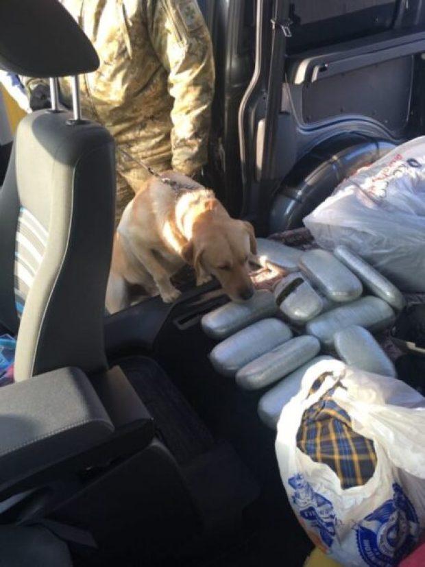 В Крым украинцы везли наркотики - на сумму более 1 миллиона гривен. Не довезли