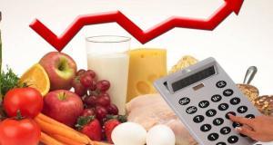 Госдума не поддержала идею госрегулирования цен на сырье и продукты