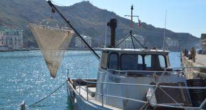 Севастопольский «Доброволец»: надеемся, что рыбаки Балаклавы останутся в бухте