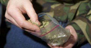 В Джанкойском районе Крыма полицейские задержали любителя марихуаны