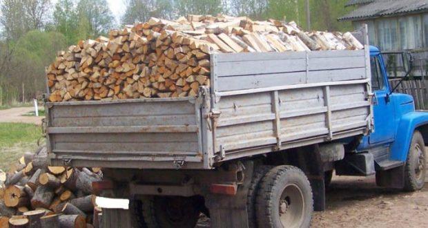 """Губернатор Севастополя обещает горожанам """"наломать дров"""" в достаточном количестве"""
