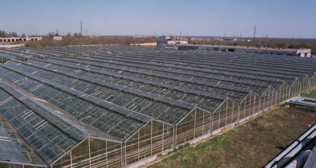 В Крыму построят два тепличных комбината ценой 6 млрд. рублей