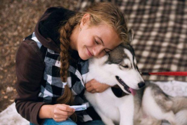 """28 января в Евпатории: акция """"Домашние - Бездомным"""". В помощь животным, пострадавшим от рук человека"""