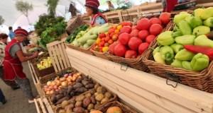 Власти Крыма намерены помочь местным фермерам в реализации продукции
