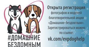 """28 января в Евпатории: акция """"Домашние - Бездомным"""". В помощь животным"""