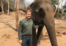 В Парке львов «Тайган» могут поселиться слоны?