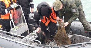В Крыму поймали браконьера-рецидивста. С очень богатым уловом