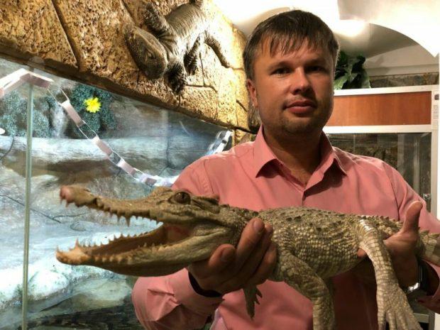 В Ялтинском Крокодиляриуме поселился уникальный крокодил-альбинос