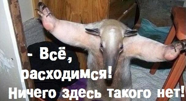 Новость о «перешейке» между Украиной и «островом Крым» оказалась фейком