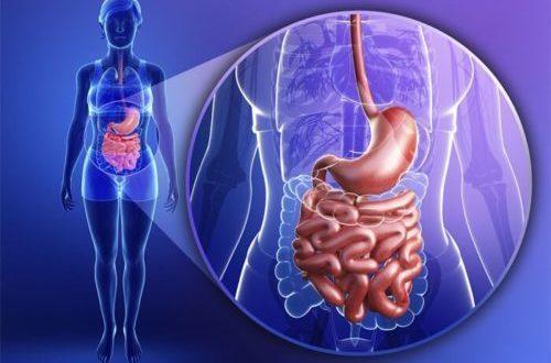 Болезни пищеварения: последствия дизентерии, развитие изжоги