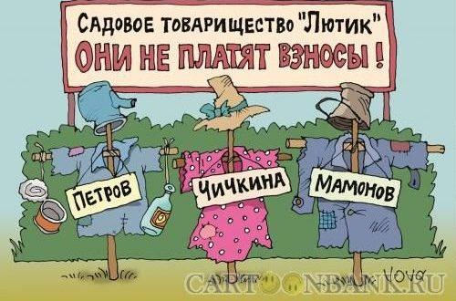 Российских дачников обяжут все взносы и платежи проводить через банк