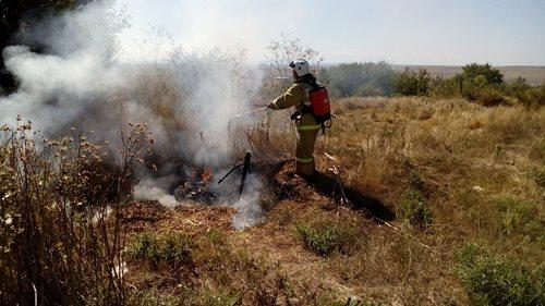Огонь и ветер. К чему приводит возгорание сухой травы на крымских пустырях