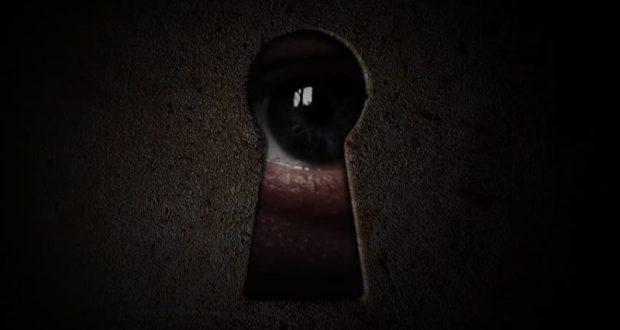 Свидетели есть всегда! История о краже мопеда в Балаклавском районе